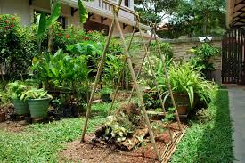 raised vegetable garden with trellis the garden inspirations