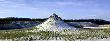 tree mountain project handmande mountain in finland glamgrid
