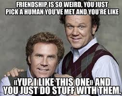 Funny Weird Memes - best funny friendship quotes and memes