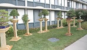 build a bonsai stand google search bonsai display ideas
