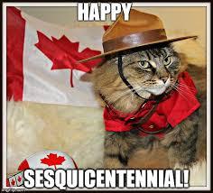 Canada Memes - canada cat meme generator imgflip