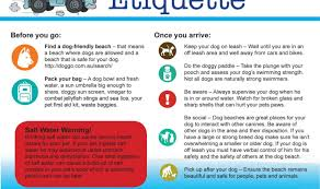 signs 30 infographics that can save your pet pet safety tips