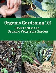 organic vegetable gardening 101 how to start an organic vegetable