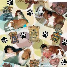 Dog Scrapbook Album Including Your Pets In Your Family Scrapbook Pawsitively Pets