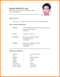 Resume Profile Sample 9 Cv Format For Job Application Pdf Nanny Resumed