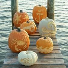 Sheldon Cooper Halloween Costume 129 Halloween Images Halloween Ideas