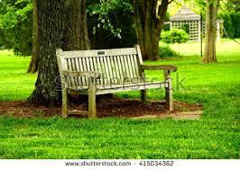 wooden bench garden stock photo 178995329 shutterstock