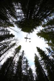 Alberta Wildfire Fitness Test by Return To Rappel The Alberta Wildfire Blog