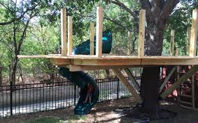 building a treehouse my thoughts and learnings purveyor of