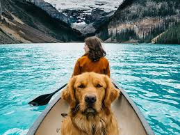 This travel photographer takes his dog with him to work and the