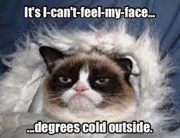 Cold Meme - 80 super cool winter memes