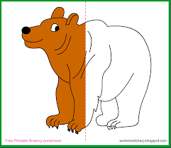 free drawing worksheets printable bear drawing worksheets