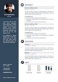 resume format it professional orienta free professional resume cv template blue resume cv