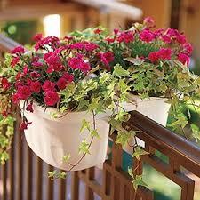 railing planters you u0027ll love wayfair