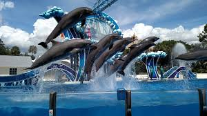 Sea World Orlando Map by Welcome To Flo Travel Usa Seaworld Orlando