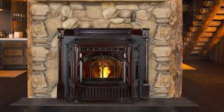 Fireplace Inserts Seattle by Mt Vernon E2 Pellet Fireplace Insert Contemporary Living Room