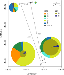 high unexpected genetic diversity of a narrow endemic terrestrial