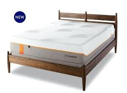Tempur Pedic Bed Frame Adjustable Bed Frame Tempurpedic Fancy Inspiration As Your Neck Pillow Cases