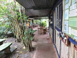 chambre montana vue de la chambre picture of montana hostel orosi tripadvisor