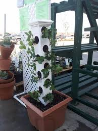 Diy Strawberry Planter by The 25 Best Strawberry Planters Ideas On Pinterest Strawberry