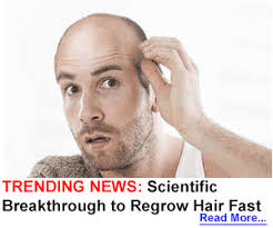 best hairtransplant in the world top 40 best hair transplant doctors in united states of america