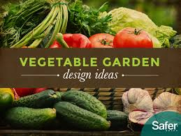 how to design the perfect vegetable garden for any space