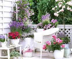 start a small flower garden u2013 exhort me