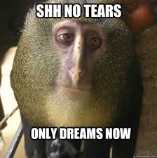 Shh Meme - 35 most funny monkey meme pictures and images
