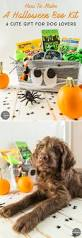 halloween gifts to make how to create a halloween boo kit a dog gift basket for halloween