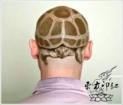 the unique and impressive turtle tattoo design beijing