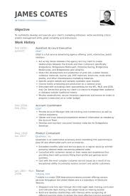 Executive Resumes Templates Assistant Account Executive Resume Samples Visualcv Resume