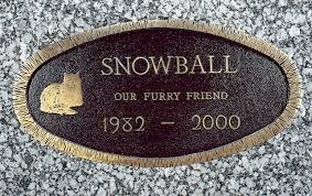 pet memorials lincoln granite