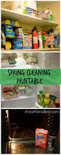 Housekeeping Tips by Best 25 Cleaning Rota Ideas Only On Pinterest Parent Command