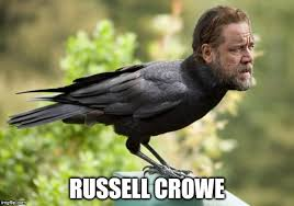 Russell Meme - image tagged in funny memes russell crowe meme virals much