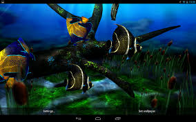 3d Home Para Android Baixar My 3d Fish Ii Android Apps On Google Play