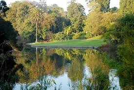 Botanical Gardens Melbourne Royal Botanic Gardens Melbourne 2018 All You Need To