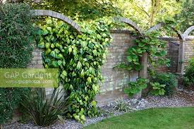 gap gardens arches created to divide up flat wall and
