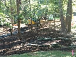 audubon naturalist society u0027s woodend sanctuary is building a tree