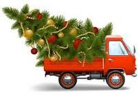 christmas tree delivery real christmas trees delivered to your door fresh cut christmas