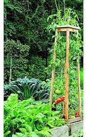 Diy Garden Trellis Ideas Nice Tomato Trellis Idea For Next Year U0027s Vegetable Garden Diy