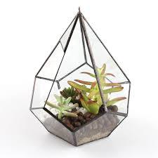 Succulent Planter by Hanging Clear Glass Prism Air Plant Terrarium Tabletop Succulent