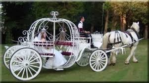 bianchi carrozze noleggio carrozza affitto renoir ristorante