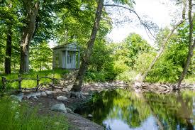 wallpaper garden jungle stream backyard wetland estate