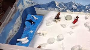 arctic habitat project youtube