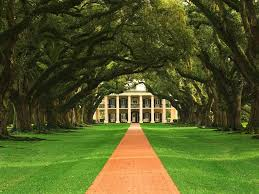 vintage dreams my very first blog oak alley plantation
