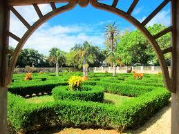 Bermuda Botanical Gardens My Experience In Bermuda We Are Bermuda