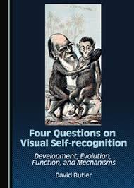 the four questions book cambridge scholars publishing four questions on visual self