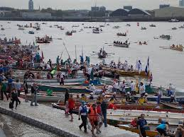 thames river boats dogs the great river race saturday 27 september 2014 isle of dogs life