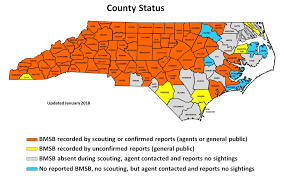 Western North Carolina Map Brown Marmorated Stink Bug In North Carolina Nc State Extension