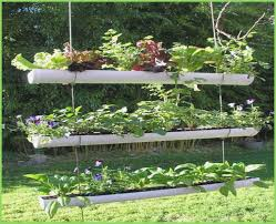 wonderful vertical vegetable garden u2013 webbird co